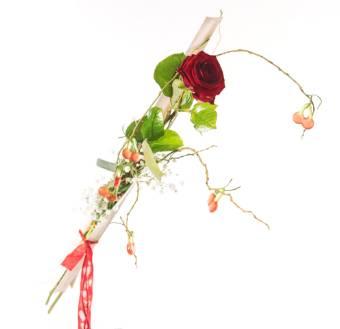 Rosa rossa con caramelle