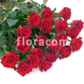 rosa rossa stelo lungo h 70 cm