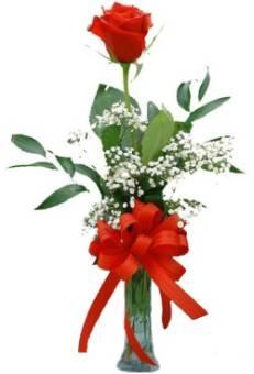 Una Rosa Rossa Fiori Co Srls Consegna Fiori In Italia