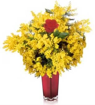 Bouquet di mimosa con 3 rose rosse