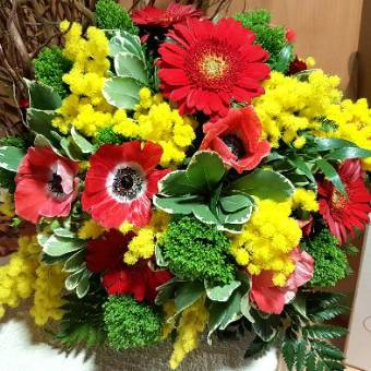 Bouquet mimosa e fiori rossi..