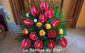 Cesto Anthurium e rose