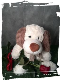 Cagnolino con rosa