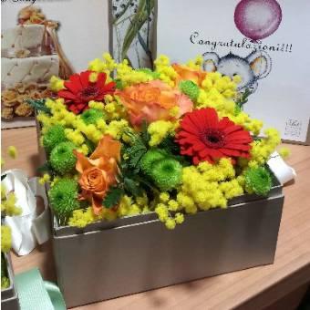 Flower box con mimosa e fiori rossi