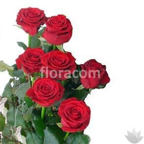 Mazzo di n. 7 rose rosse a stelo lungo.