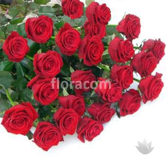 Mazzo di n. 24 rose rosse a stelo lungo.