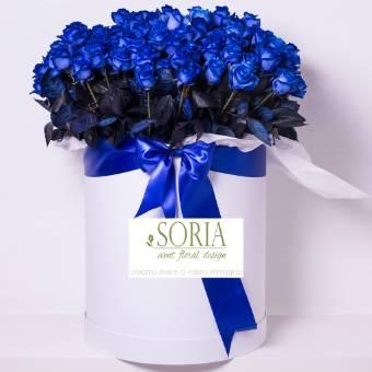box 100 rose