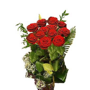 12 ROSE ROSSE EXTRA a gambo lungo