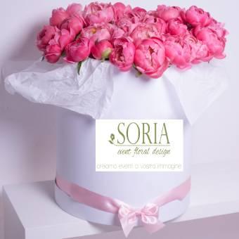 mille rose box 60peonie