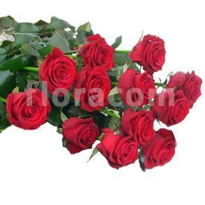 Mazzo di n. 12 Rose rosse a stelo lungo.