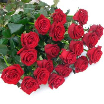 Mazzo di n. 30 rose rosse a stelo lungo.