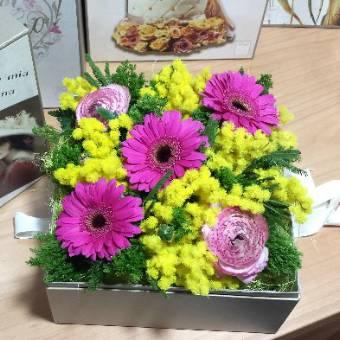 Flowerbox con mimosa e fiori rosa/fuxia