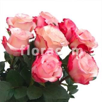 bouquet di rose n.7