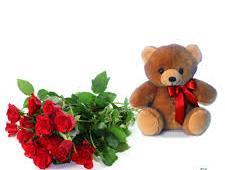 Mazzo con 7 rose rosse e PELUCHE
