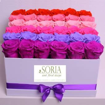 square box 36 rose multicolor stabilizzate