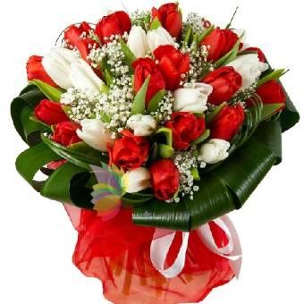 bouquet con tulipani rossi e bianchi