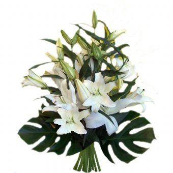 fioreria primo fiore consegna fiori ospedale trento trento