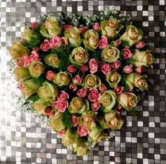 Cuore rose di due tonalita