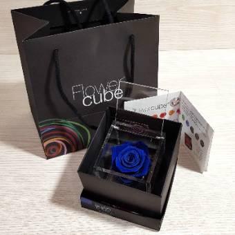 Flowercube 8x8cm rosa BLU