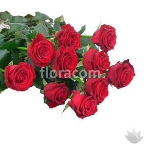 Mazzo di n. 10 rose rosse a stelo lungo.