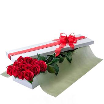rose in scatola
