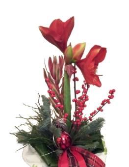 Mazzo di fiori natalizio