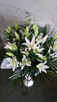 Bouquet Lilium Bianchi