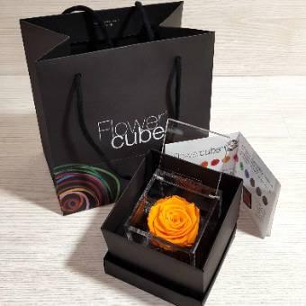 Flowercube  8x8cm rosa ARANCIONE