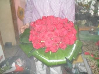 rose rosse o vari colori