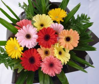 Bouquet Gerbere Mix