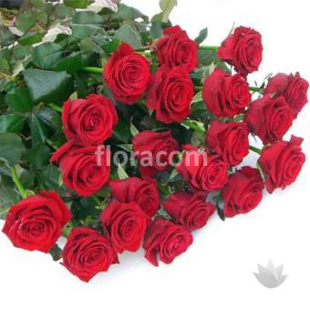 Mazzo di n. 20 rose rosse a stelo lungo.