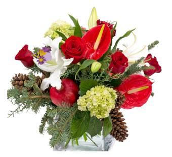 Bouquet rosso e bianco originale