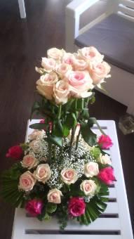 rose alte colorate