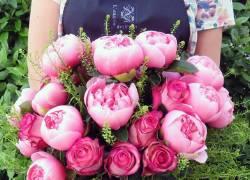 Foto L'angolo dei fiori di Gianferrari Rossana