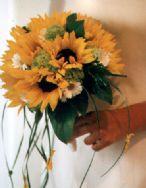 Foto Il Camuciolo fiori - Samantha di Ferri G. & C. snc