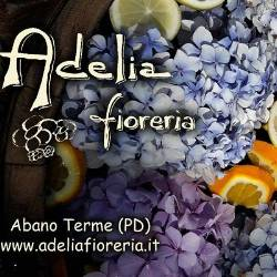 Adelia fioreria srl
